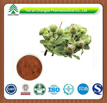High Quality Pure Natural Burdock Root Extract