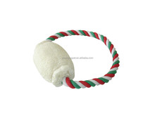 dog chewing toy with rope