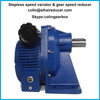 Stepless speed variator and gear speed reducer