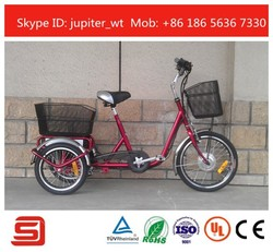 Lovely style 3 wheel Electric tricycle JST02