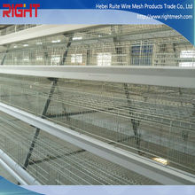 Different Designs Uganda Poultry Farm Automatic Chicken Layer Cage / Chicken Wire For Bird Cage