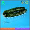 hot sale disposable transparent PET fruit tray/Disposable Plastic Fruit Tray /food packaging tray