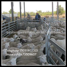 sheep panel enclosures