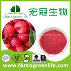 100% fábrica de fornecimento hawthorn berry extrato