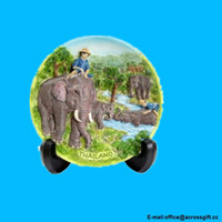 Decorative Plate Wild Elephant In Deep Forest Thailand Souvenir