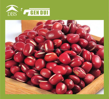 Small Red kidney beans types of kidney beans types of kidney beans