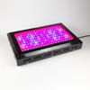 168*3W LED grow light, 500w LED grow lighting, full spectrum led grow lights for pants