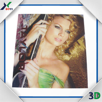 Various lenticular 3D picture,wholesale of lenticular 3d pictures