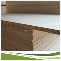ceiling plywood / plywood formica laminate / marine plywood cheap