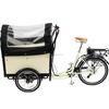 recumbant trike for cargo