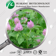 OEM Natural Organic Red Clover Extract