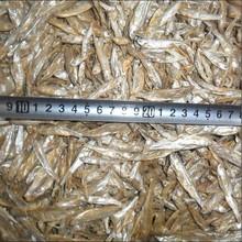 sun dried whole fish
