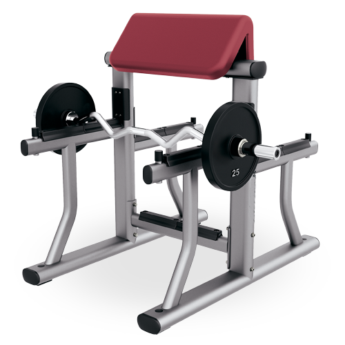 Commercial fitness equipment preacher curl bench XF22