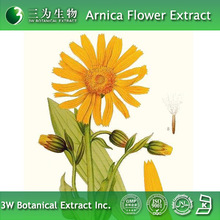 Top-quality Arnica Flower Extract Powder Made in 3W Botanical