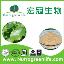 Asiatic Pennywort Extract Asiaticosides 10%-90% improving blood circulation