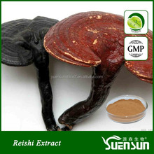 100% natural ganoderma lucidum extract reishi mushroom extract