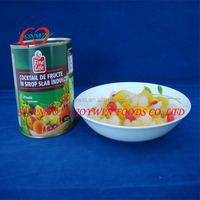 Cheap price canned fruits, canned fruit cocktail in light syrup