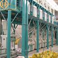 50 T / 24 H trigo molino, puede producir buena calidad de la harina de hacer pan, torta, galleta, pasta y así sucesivamente