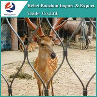 316 Stainless Steel Zoo mesh, Aviary Mesh, Zoo Bird Enclosure Netting