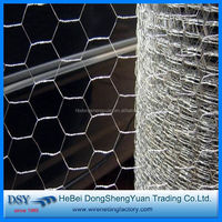 Alibaba China Supplier hexagonal wire mesh for chicken house