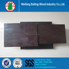 Container flooring plywood/ marine plywood for concrete formwork
