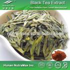 Alta qualidade instant chá preto pó do extrato de polifenóis 20% 30%