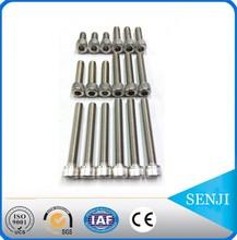 Stainless steel 316 hexagon socket head cap screw Wholesale