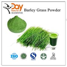 Free Sample Barley Grass Powder Vegetable Powder