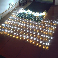 Twinkle Customizable Flexible LED Rice String Light