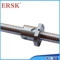 Professional manufacture electric ball screw linear actuator with dc motor hiwin ball screw price DFU2505-5