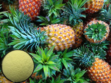 Natural colour plant newest pineapple stem extract bromelain enzyme
