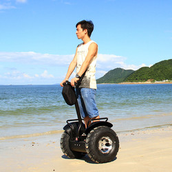 2015 Fashion Style Adult Electric Motorcycle 2000W with CE