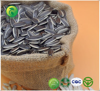 Agriculture Hybrid Sunflower Seeds