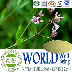 Hot sale Apocynum venetum extractApocynum venetum Extract powder/Easy heart failure plant extract