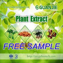 Reliable Supplier Pure soursop extract e p (annona squamosa l.)