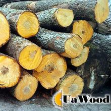 Hardwood logs (Oak, Ash, Birch, Beech, Hornbeam, Poplar)