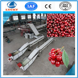 China manufacture automatic small fruit/cherry sorting machine by size