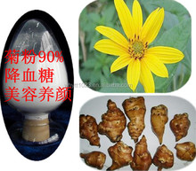 Natural herbal powder chicory extract Inulin 90%