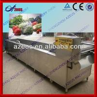 2013 new designed fruit and vegetable processing machines vegetable fruit washing and drying machine
