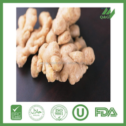 Fresh ginger buyers product