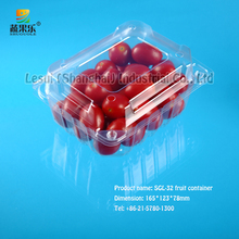 China cherry tomatoes fruit packaging SGL-32