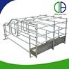 Hot Dip Galvanized Pig Equipment Pig Gestation Stall