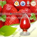 de haute qualité poudre de fraise en poudre de jus de fruits