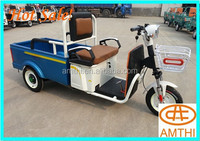 Hot Sale China Factory Electric Cargo Tricycle With Cabin And Box For Passengers/kids Trike,Amthi