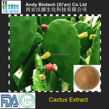 Best Selling Cactus Plant Extract 10:1