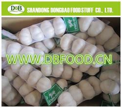 4.5cm,5.0cm,5.5cm,6.0cm,6.5cm Chinese Fresh Garlic