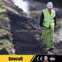 HDPE Plastic Grass Paver Panel Geocell Web