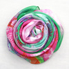 2015newest design woman lovely scarf fashionable wrap(PP660AL-C)