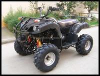 250 cc atv/ quad bike