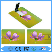 Hot selling low price 2gb business card usb with free logo printing